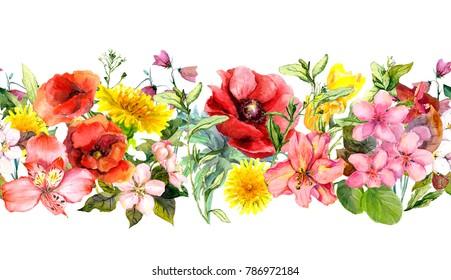 Field flowers, summer grasses, leaves. Repeating horizontal border. Watercolor