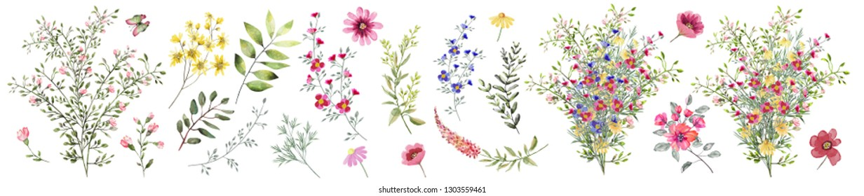 Field flowers.  Watercolor illustration. Botanical collection of wild and garden plants. Set: different wild flowers, pink, blue, yellow, leaves, bouquets,branches, buds, herbs .