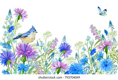 Field flowers,cornflowers,bluebells, bird and butterfly,Watercolor illustration for greeting cards,textiles
