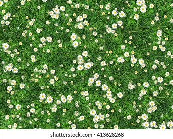 Field of green grass with flowers daisies. Chamomile is surrounded by lawn. Top view. High resolution 3d illustration