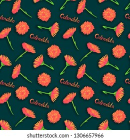 Field marigold (Calendula arvensis)  flowers, hand painted watercolor illustration with inscription, seamless pattern design on dark green background