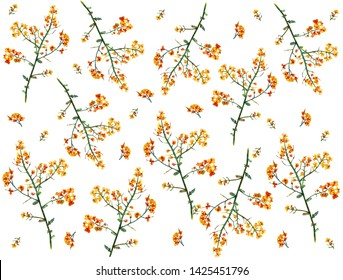 field meadow yellow flowers on a white seamless background summer pattern for a dress