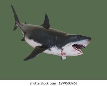 Fierce shark. 3d illustration