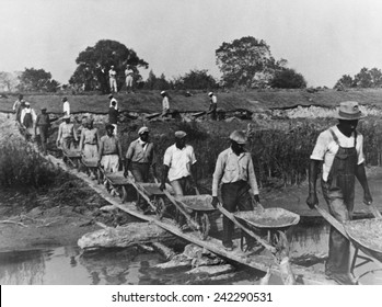 Fifteen African American laborers with wheel barrels hauling dirt to build a levee in Louisiana in 1935 as four whites supervise and watch the workers. 1935 photo by Ben Shahn.
