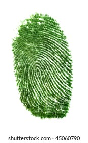 Fingerprint of grass