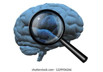 Fingerprint on brain, magnify glass. 3D rendering