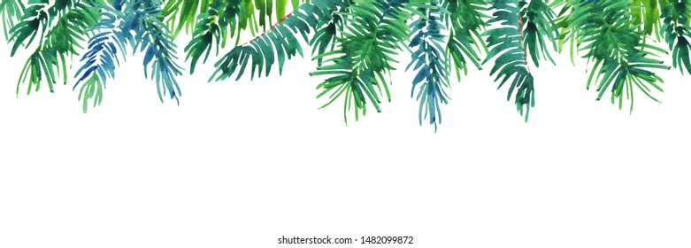 Fir branches on the top of the page. Design template. Hand drawn sketch watercolor illustration on white background