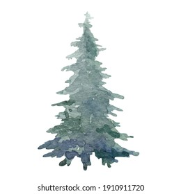 Fir tree single watercolor image. Hand drawn relistic lush pine illustration Green forest plant element. Christmas tree object on white background. Evergreen natural spruce green festive tree