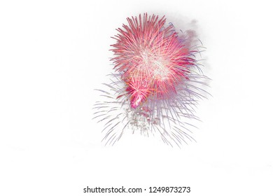Fireworks with white background