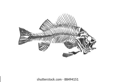 Fish skeleton isolated
