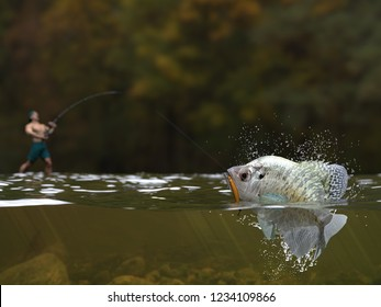Fishing time, fisherman holding rod and reel catching freshwater  crappie  fish half water view 3d render