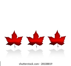 The Flag of Canada with maple leaves