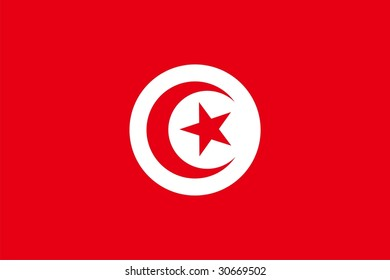 Flag of Tunisia. Illustration over white background