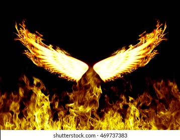 Flames wings on a black background .