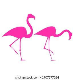 Flamingo bird silhouette drawing on white background