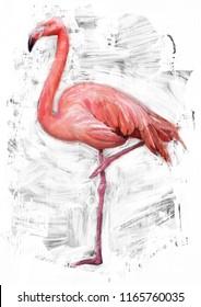 flamingo bird sketch / oil color painting