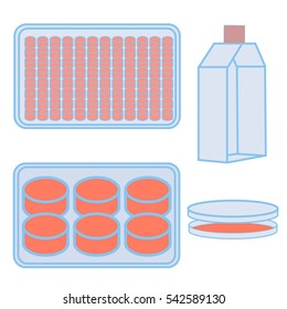 Flask and plates for cell cultivating.Stock raster copy illustration of lab equipment used in natural sciences experiments