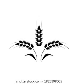 Flat  line icon of barley, rye, wheat,  illustration