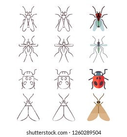 Flat, line and skech icons of insects