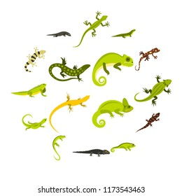 Flat lizard icons set. Universal lizard icons to use for web and mobile UI, set of basic lizard elements isolated illustration