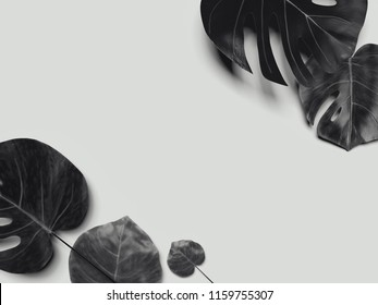 Flatlay with black tropical flowers on gray background. 3D rendering.