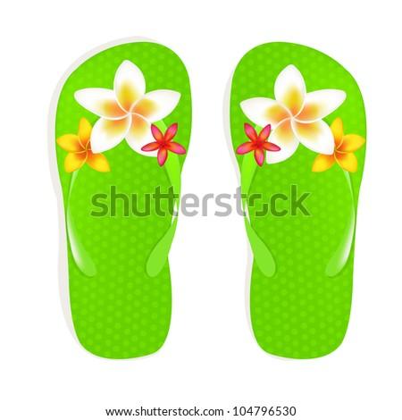 45ae5ca22545 Flip Flop Sandals Plumeria Flowers Isolated Stock Illustration ...