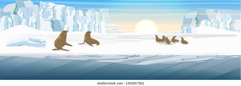 Flock of fur seals on the snow-covered coast. Glacier. Landscapes of Alaska and other northern regions. Realistic raster landscape