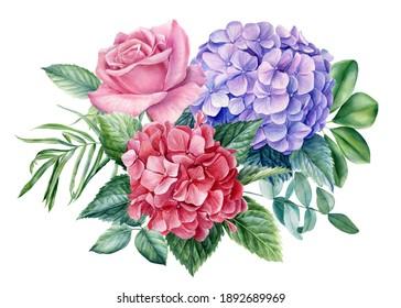 Flora design elements, rose flowers, hydrangea on white background, watercolor botanical illustration
