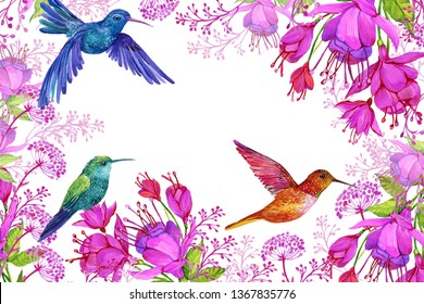 floral background with exotic flowers and Hummingbird birds,illustration for greeting cards on isolated white background