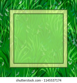 Floral Background, Landscape, Summer or Spring Meadow, Green Grass, White and Blue Flowers and Frame for Your Text.