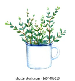 Floral bouquet of eucalyptus branches in a enameled mug.Watercolor hand drawn illustration.It can be used for greeting cards, posters, wedding cards.White background.