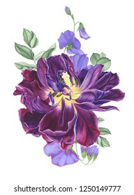 Floral bouquet with purple tulip, branches of eucalyptus and sweet pea, watercolor painting. For design cards, print, textile and patterns.