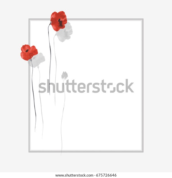 Floral decoration. Birthday card. Blossoming flowers of red poppies on a white background. Watercolor