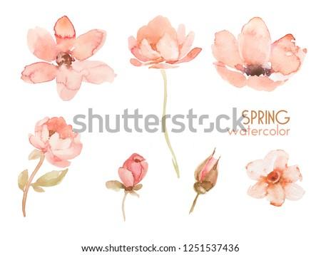 Floral Design Watercolor Flowers Leaves Wedding Stock Illustration