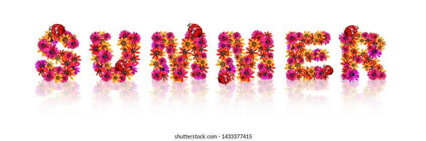 Floral flower design text with red ladybug
