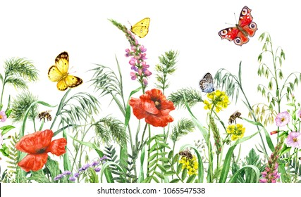 Floral horizontal seamless border with watercolor wildflowers, red poppies, bees and butterflies. Summer pattern with hand drawn melliferous flowers, flying and sitting insects on white background.