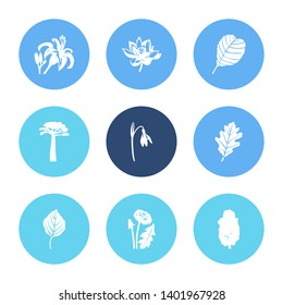 Floral icon set and dandelion with lotus, apricot leaf and snowdrop. Marula related floral icon  for web UI logo design.