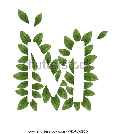 Royalty Free Stock Illustration Of Floral Letter M Beautiful Green