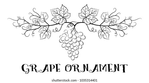Floral Ornament, Bunch of Grapes with Leaves and Berries Black Contour Pictograms Isolated on White Background.
