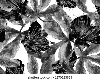 Floral Pattern Trendy. Large Jungle Seamless Print on Black and White Background. Big Jungle Spring Aquarelle Granadilla Endless Background. Random Floral Pattern.