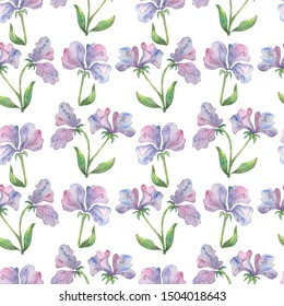 Floral seamless pattern with beautiful delicate purple flowers watercolor drawing on white. For wallpaper, pattern deign, texture, fabric design, textile, cover, wrapping paper, banner, card
