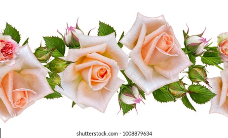 Floral seamless pattern, horizontal border, garland of delicate pastel orange roses, buds and leaves. Isolated on white background.