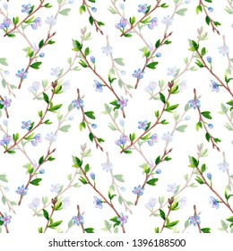 Floral seamless pattern with spring branches with flowers. Apple or cherry tree. Hand drawn watercolor illustration.