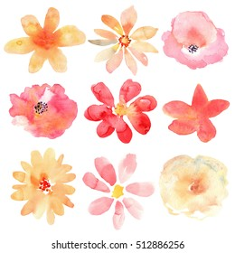 Floral set. Collection with flowers, drawing watercolor.