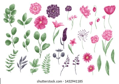 Floral set of isolated flowers, leaves, branches. Digital painting