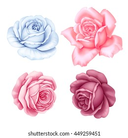 Floral set of pink, red, blue white vintage rose flowers  isolated on white background. Watercolor imitation illustration.