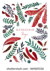 Floral template for book cover, poster, card. Watercolor herb design. Flower, leaf, branch, butterfly elements. Red and green shades.