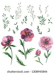Floral watercolor set with pink daisies.