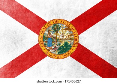 Florida Flag painted on leather texture