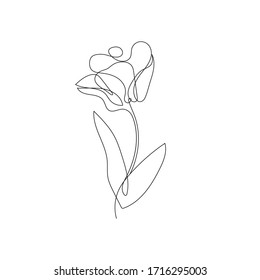 Flower Continuous One Line Drawing. One Line Floral Abstract Illustration. Minimalist Flower Design. Botanical Contour Drawing. Raster copy.